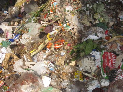 Municipal waste Shredders