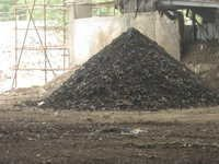 Biomass Shredder
