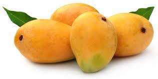 Indian Mango Exporters