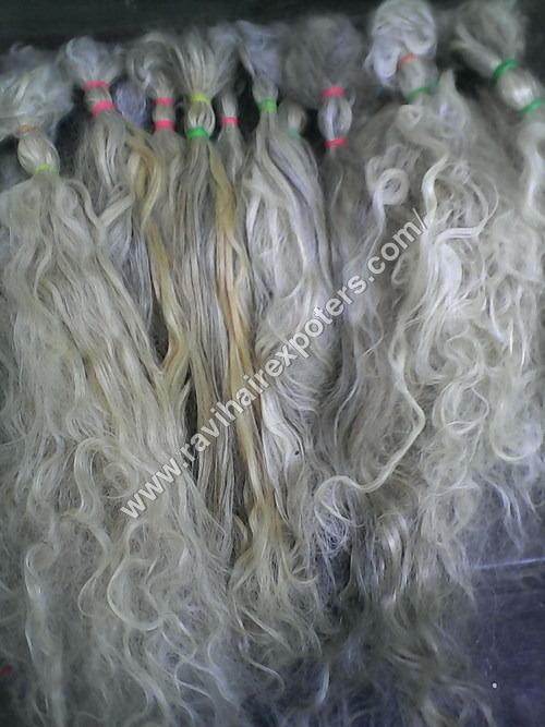 Pure White Grey Hair