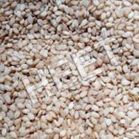Pure Sesame Seed