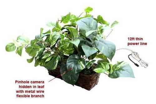 SPY SECRET HIDDEN FAKE MONEY PLANT CAMERA IN DELHI INDIA