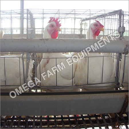 Allied Poultry Equipment