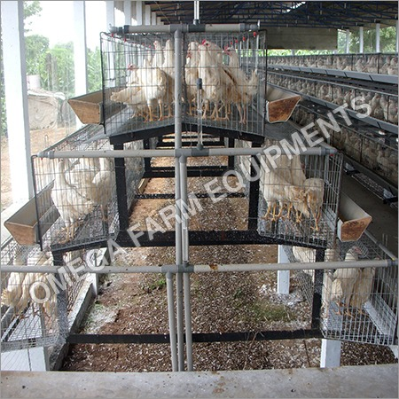 California Layer cages