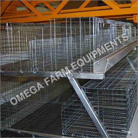 Semi Automatic Poultry Cages