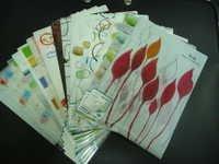 Neostyle L-Folder, 24 Beautiful Designs A4