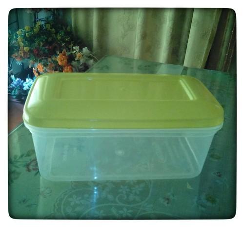 Lightweight Plastic Box
