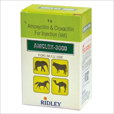 Amoxycillin Cloxacillin Veterinary Injection