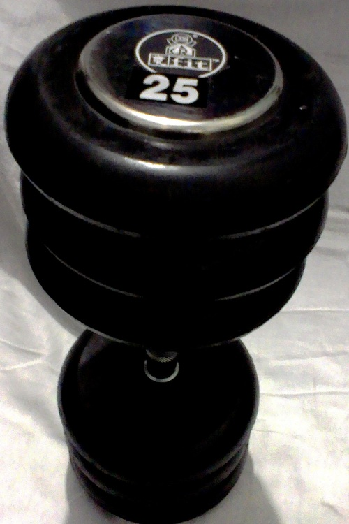 25kg Chrome Dumbbell