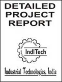 Industrial project report