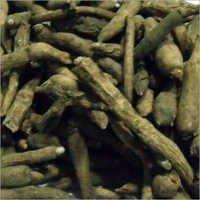 Ativisha Roots