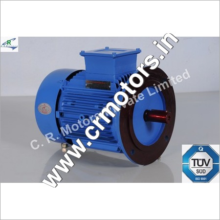 Foot Cum Flange Mount Motor
