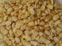 White Corn Maize Exporter