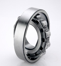 2200 Series Cylindrical Roller Bearing
