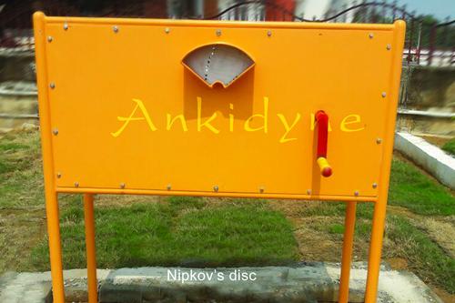 Nipkov's disc