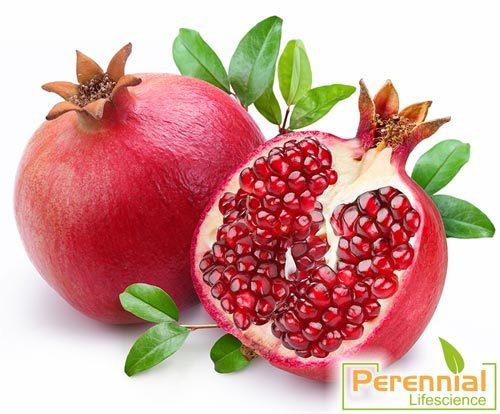 Dried Pomegranate Juice Powder