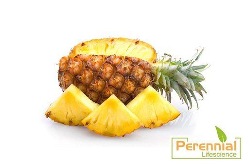 Dried Pineapple Juice Powder