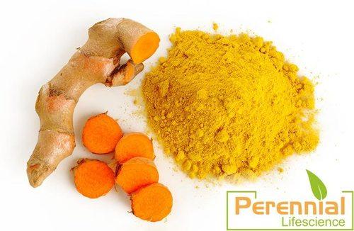 Turmeric Extract/Curcumin 95% Exract