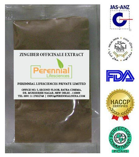Zingiber officinale extract