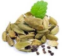 Green Cardamom Price From India