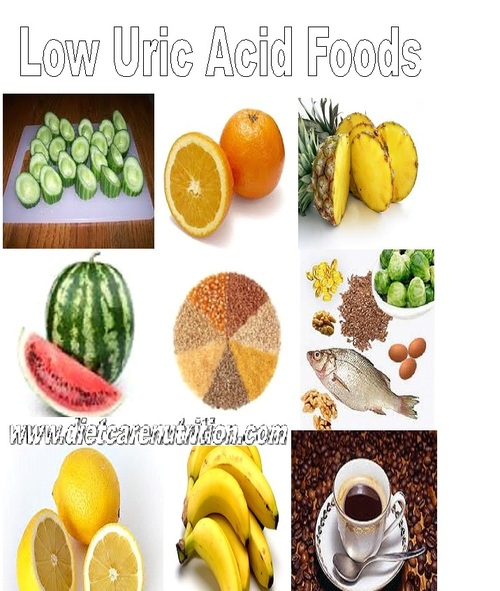 Protein Foods Low In Uric Acid