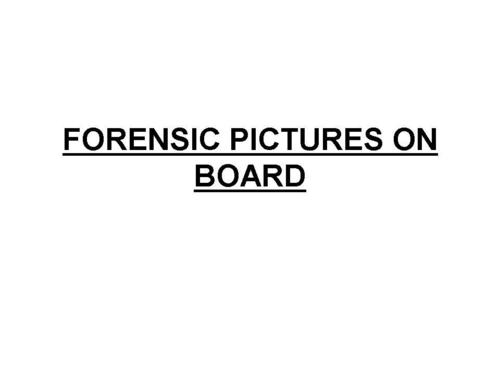 FORENSIC PICTURES ON BOARD