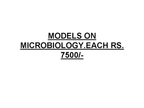 MICROBIOLOGY MODELS