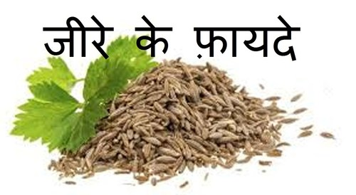 Cumin Seeds specification 96%