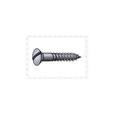 Slotted Oval Head Wood Screw