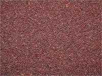 Mustard Seeds Best Quality