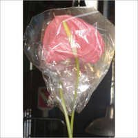 ANTHURIUM   PINK COLOR