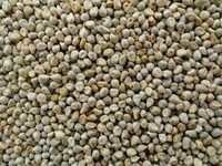 Millet From India
