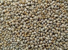 Millet price