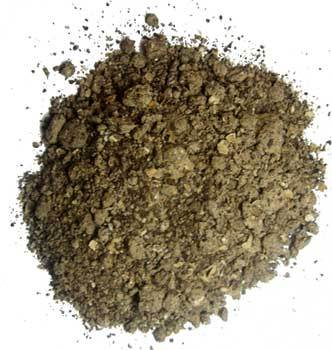 Indian Castor Seed Meal