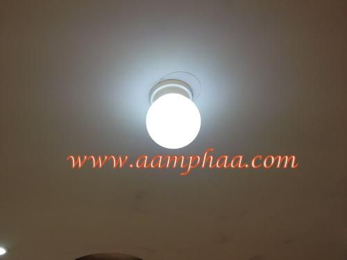 White Coloured Light Bulbs