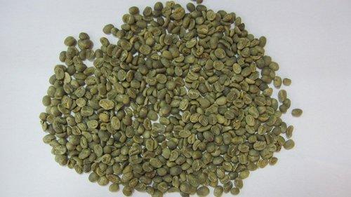 Coffee Beans Robusta AB
