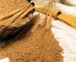 Wheat suppliers