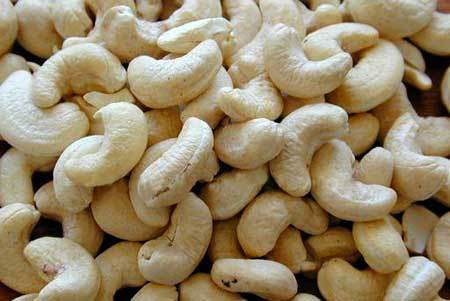 Cashew Nut Kernel Scorched Whole Seconds SSW
