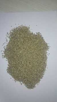 Pearl millet seeds, Yellow Millet seed suppliers