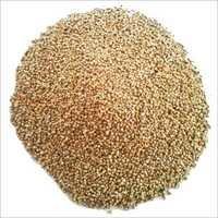 Millet Seeds Exporters