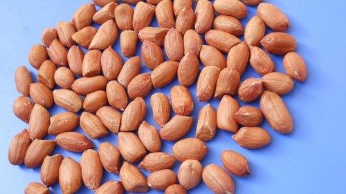 Peanut Kernel Java 40 50