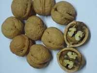 Walnut in Shell Size 32 mm Superior Grade