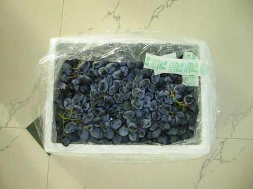 Indian Grapes Black
