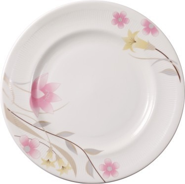 White Bone China Dinner Plates
