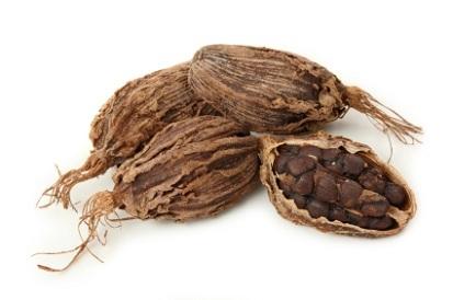 Black Cardamom with Mooch