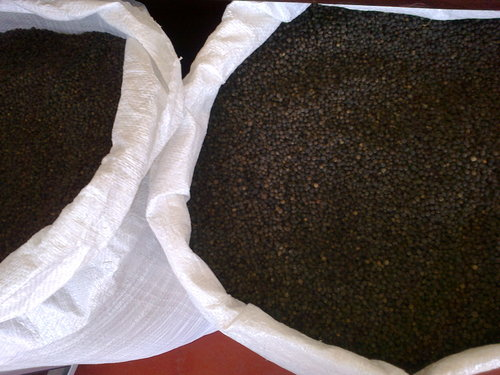 Black Pepper MG Grade 1