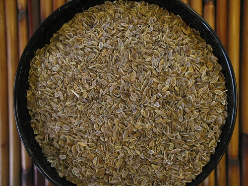 Dill Seeds Singapour Quality