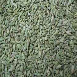Fennel Seeds Europe Quality