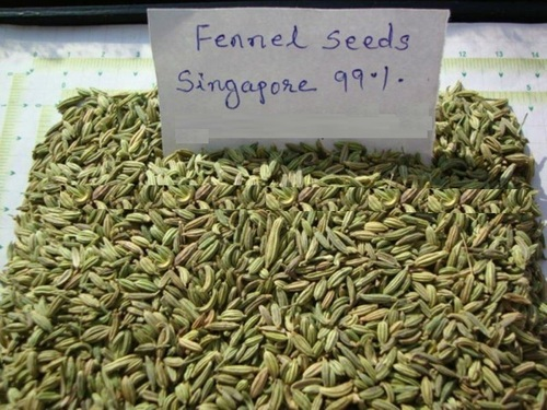 Fennel Seeds Singapour Quality