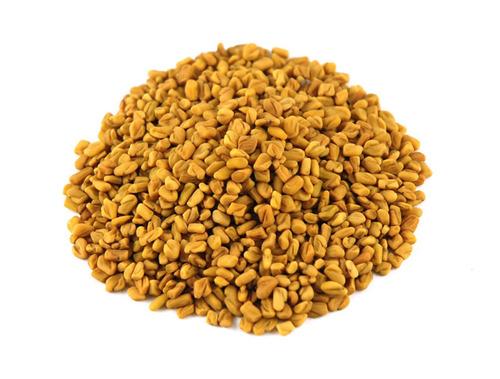 Fenugreek Seed Machine Clean Small Grain A Grade